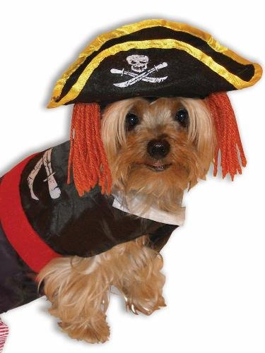 Forum Novelties 64862 Pet Pirate Costume Large - For Dogs & Cats, Pack of -