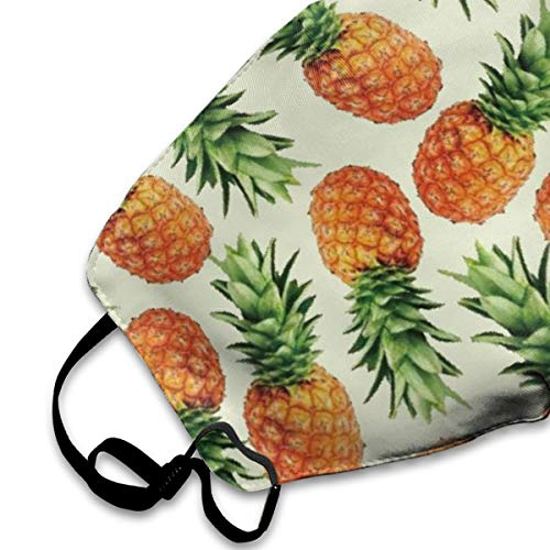 NEWINESS Premium Men Women Breathable Indoor Outdoor Half Face Mask - Adjustable Dustproof Anti Pollution Pollen Safety Medical Mouth Mask Hawaii Aloha Pineapple