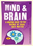 Introducing Mind & Brain: A Graphic Guide