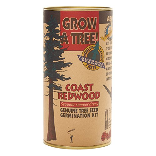 - Coast Redwood | Tree Seed Grow Kit | The Jonsteen Company