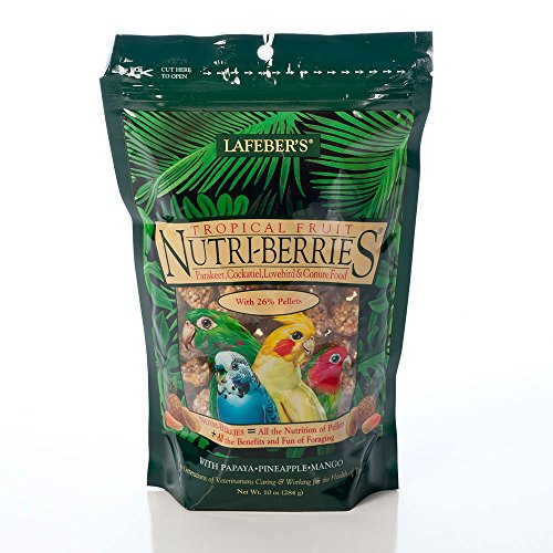 Cockatiel Berry - Lafeber's Gourmet Tropical Fruit Nutri-Berries for Cockatiels 10 oz Bag