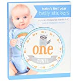 Best C.R. Gibson Gifts For Newborns - C.R. Gibson ` Blue Animal Baby Boy Milestone Review