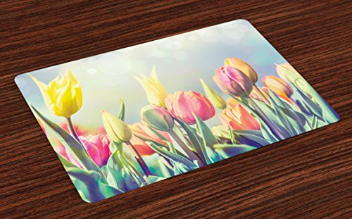 Ambesonne Pastel Place Mats Set of 4, Tulips Flower Bed in Park Serene Landscape Happiness Fresh Spring Environment Image, Washable Fabric Placemats for Dining Table, Standard Size, Blue - Colorful Beds Flower