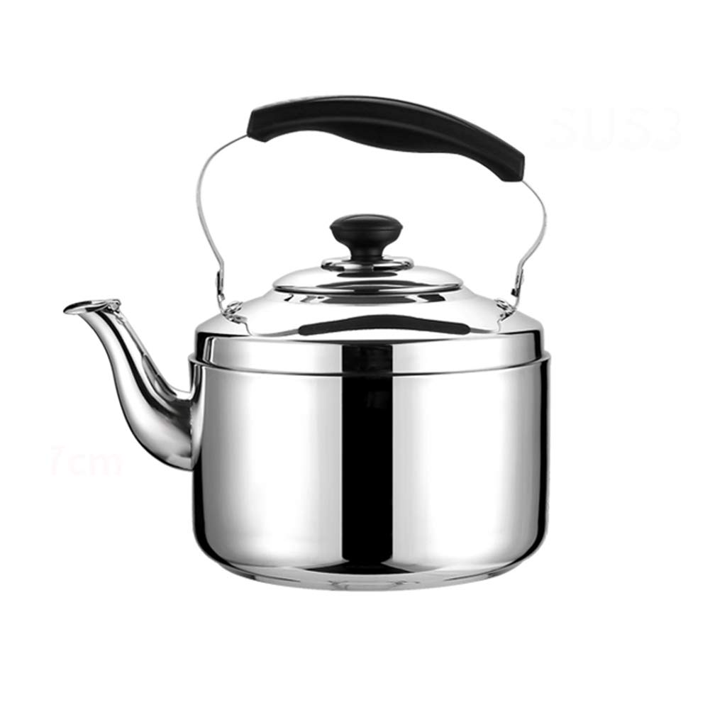Classic Whistling Kettles with Water Outlet Filter And Thickened Kettle Body, Anti-Scalding Handle 4L Large Capacity Silver by KXDAR