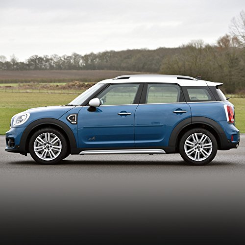 Dawn Enterprises FE-COUNTRY10 Finished End Body Side Molding Compatible with Mini Cooper - ELECTRIC BLUE METALLIC - Metallic Vehicles Mini