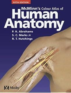 McMinns Color Atlas Of Human Anatomy Clinical Atls