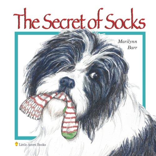 Download The Secret of Socks PDF