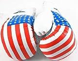 1 Pair USA Flag 20oz Boxing Punching Gloves