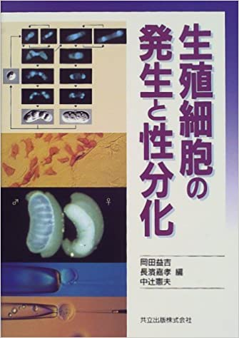 生殖細胞の発生と性分化 | 岡田 ...