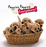 Puppies, Puppies Everywhere!, Peggy Schaefer, 082495887X