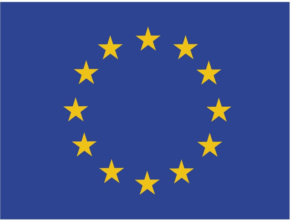 Adesivo Bandiera Unione europea rettangolare 80 x 60 mm Ediciones Imagina S.L.