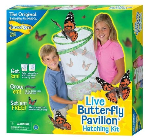 Game / Play Insect Lore Live Butterfly Pavilion/Standard Packaging. Cage, Net, Habitat, Hatching, Raise Toy / Child / Kid