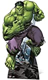 Marvel Avengers - Muñeco recortable Marvel (SC744)