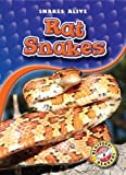 Rat Snakes (Blastoff! Readers: Snakes Alive) (Blastoff Readers. Level 3)