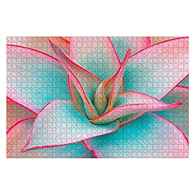 Agave Leaves Floral Beauty Stock Pictures, Royalty Free Photos 1000 Piece Wooden Jigsaw Puzzle DIY Children Educational Puzzles Adult Decompression Gift Creative Games Toys Puzzles Home Decor: Toys & Games