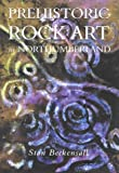 Prehistoric Rock Art in Northumberland, Stan Beckensall, 0752419455