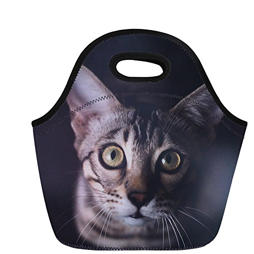 Tote Lunch Bag Cat Animal Pet Costum Picnic Box Luggage for Women Men Adult Kids Girls Boys Insulated Meal with Zip Closure -