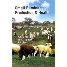 Small Ruminant Production & Health