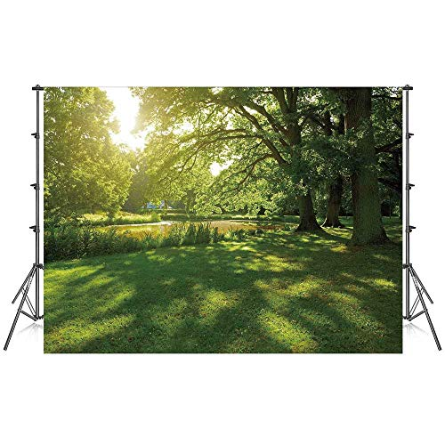 - Green Stylish Backdrop,Summer Park in Hamburg Germany Trees Sunlight Forest Nature Theme Scenic Outdoors Picture for Photography Festival Decoration,86''W x 59''H
