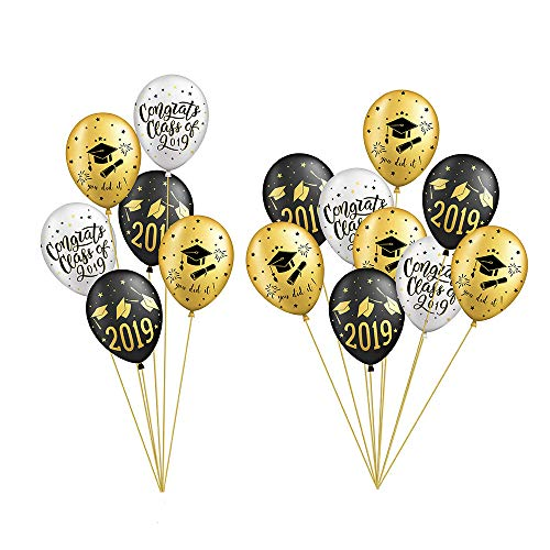 Rainlemon 2019 Graduation Party Latex Balloons Class of 2019 Party Decoration -Pack of 15 -
