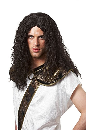 Costume Culture Barbarian Wig, Black, One Size]()