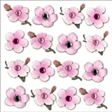 Jolee's Boutique Dimensional Repeat Stickers, Cherry Blossom