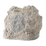 Niles RS5 Coral 5.25-inch 2-Way High Performance Rock Loudspeaker (Each)