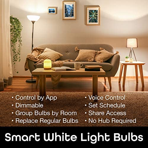 Geeni LUX 800 Dimmable A19 White LED Smart Home Light Bulb