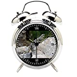 Children's Room Silver Dinosaur Silent Alarm Clock Twin Bell Mute Alarm Clock Quartz Analog Retro Bedside and Desk Clock with Nightlight-242.348_Animal Wildlife Reptile Iguana Fauna Lizard Mexico