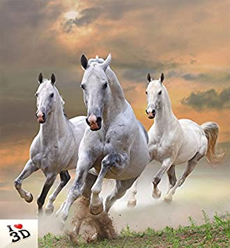 Kayra Decor Three White Running Horses 3d Wallpaper Print Decal