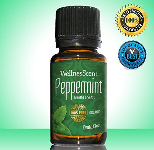 Peppermint Essential Oil 100% Pure Organic & Therapeutic Grade, Used in Aromatherapy -10 Ml Mentha ()