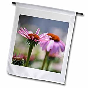 PS Flowers - Garden of Echinacea Flowers - Floral Print - 18 x 27 inch Garden Flag (fl_59945_2)