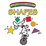 My First Book Shapes, Lourdes M. Alvarez, 193305011X