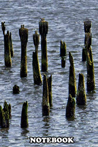 Notebook: Pier Pilings Left Over From Some Past Hurricane , Journal for Writing, College Ruled Size 6' x 9', 110 Pages