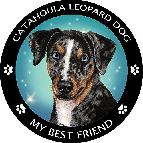 Catahoula Leopard Dog My Best Friend Magnet