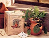 Toysmith Grow Your Own Italian Herb Garden Kit