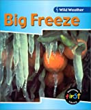 Big Freeze, Catherine Chambers, 1588106586