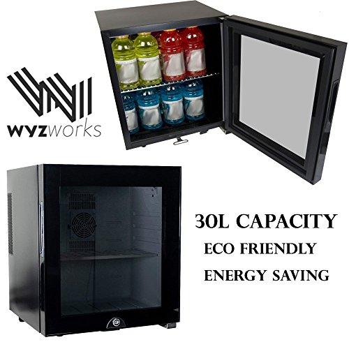 WYZworks 30L Stainless Steel Refrigerator Semiconductor Ener