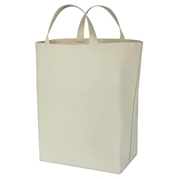 Amazon.com: Equinox Canvas Grocery Bag (Plain): Kitchen & Dining
