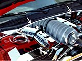 amazon com american car craft dodge challenger 2008 2009 2010 2011 rh amazon com Dodge Challenger SRT8 392 Hemi Black Dodge Challenger SRT8