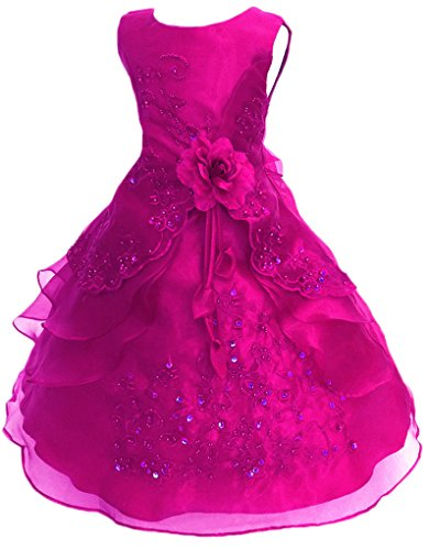 Shiny Toddler Little Girls Embroidered Beaded Flower Girl Birthday Party Dress with Petticoat 7t to 8t(Tag130),Hot Pink