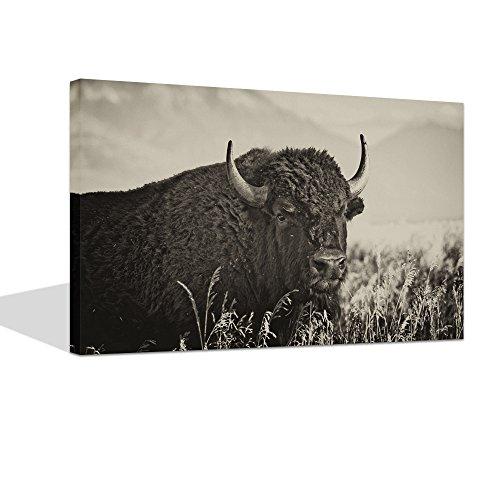 (Live Art Decor - Vintage Wall Art Framed Close-up View of Wild American Buffalo Bison in Field of Tall Grass Sepia Photography Print on Canvas Painting for Home Decor Stretched and Ready to Hang)