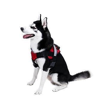 Speedy Pet Chaleco para Perros Duradero, sin Tirar, arnés de ...