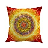 Pillow Case Covers, Howstar Sofa Decorative Throw Cushion Cover With Hidden Zipper 18 x 18 Inch (B)