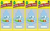 Little Trees Summer Linen Air Freshener, (Pack of 24)