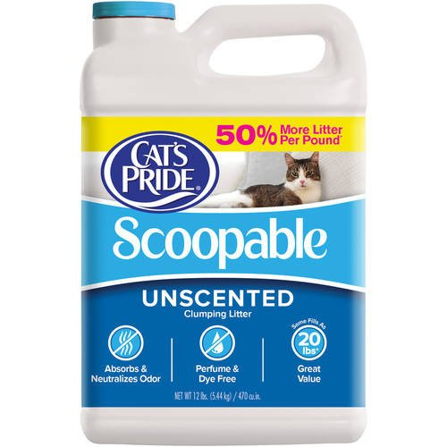 Cat's Pride Scoopable Unscented Litter, 12 lb