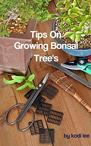 Tips On Growing Bonsai Tree's