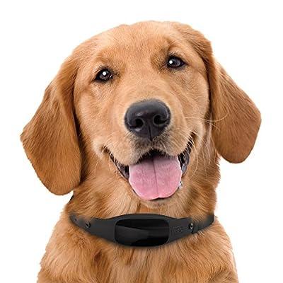 BLACK+DECKER Smart Dog Collar, GPS Tracker, 2-Way Audio, Water Resistant, Black Med/Large (Fits 15