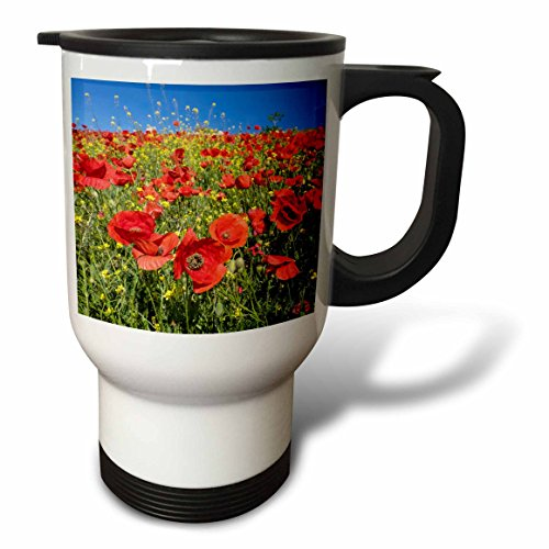3dRose Danita Delimont - Flowers - Spain, Andalusia. A field of bright and cheerful red poppy wildflowers - 14oz Stainless Steel Travel Mug (tm_277891_1) by 3dRose