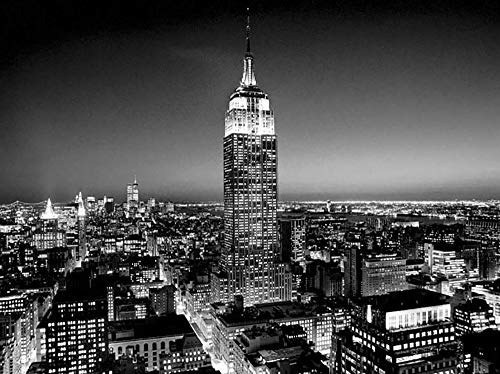 (Studio B Prints Empire State Building at Night by Henri Silberman 31.5